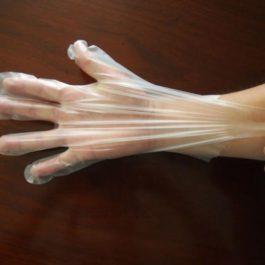 Clear TPE Gloves (Food Safe)